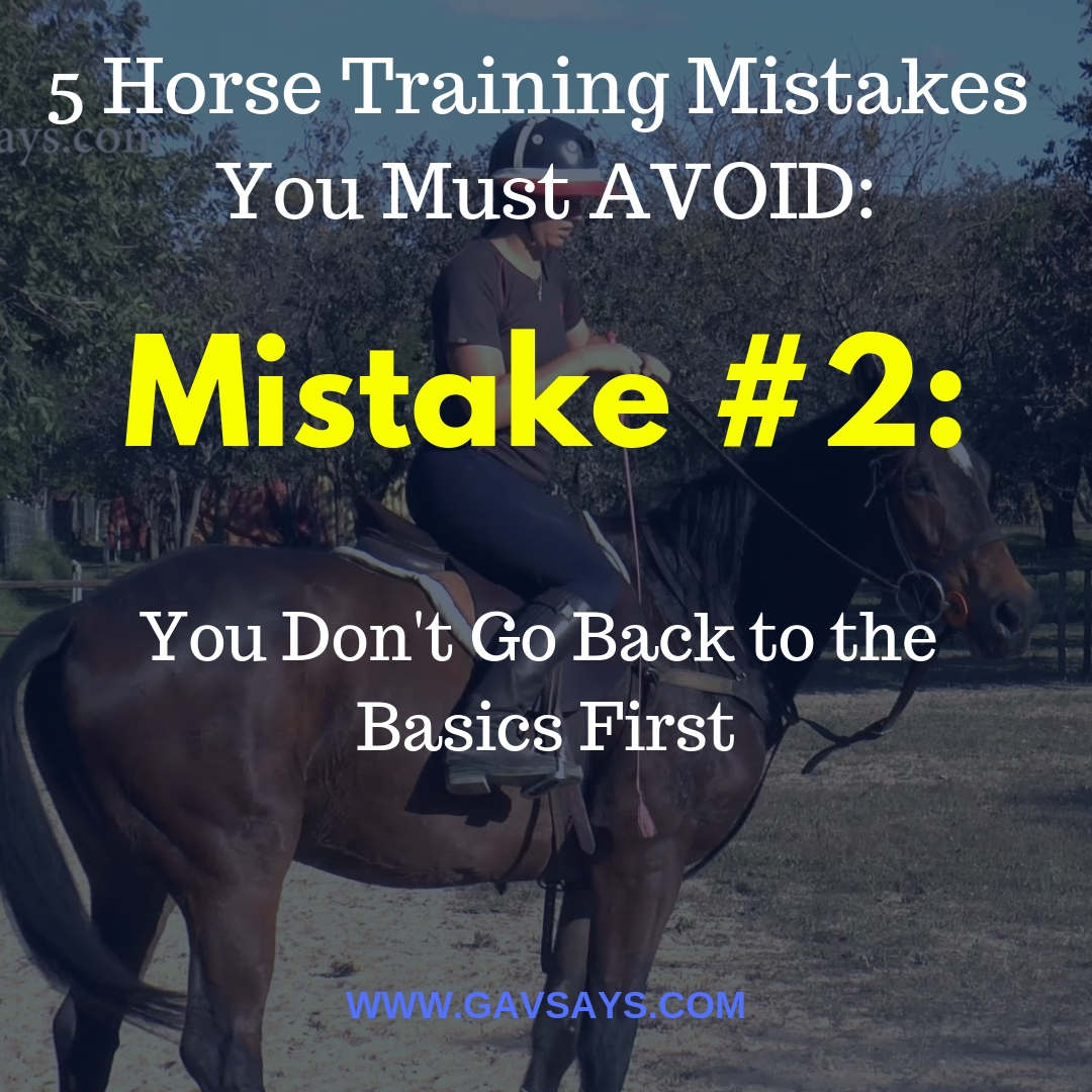 5 Horse Training Mistakes You're Making & Need to Avoid: Mistake #2