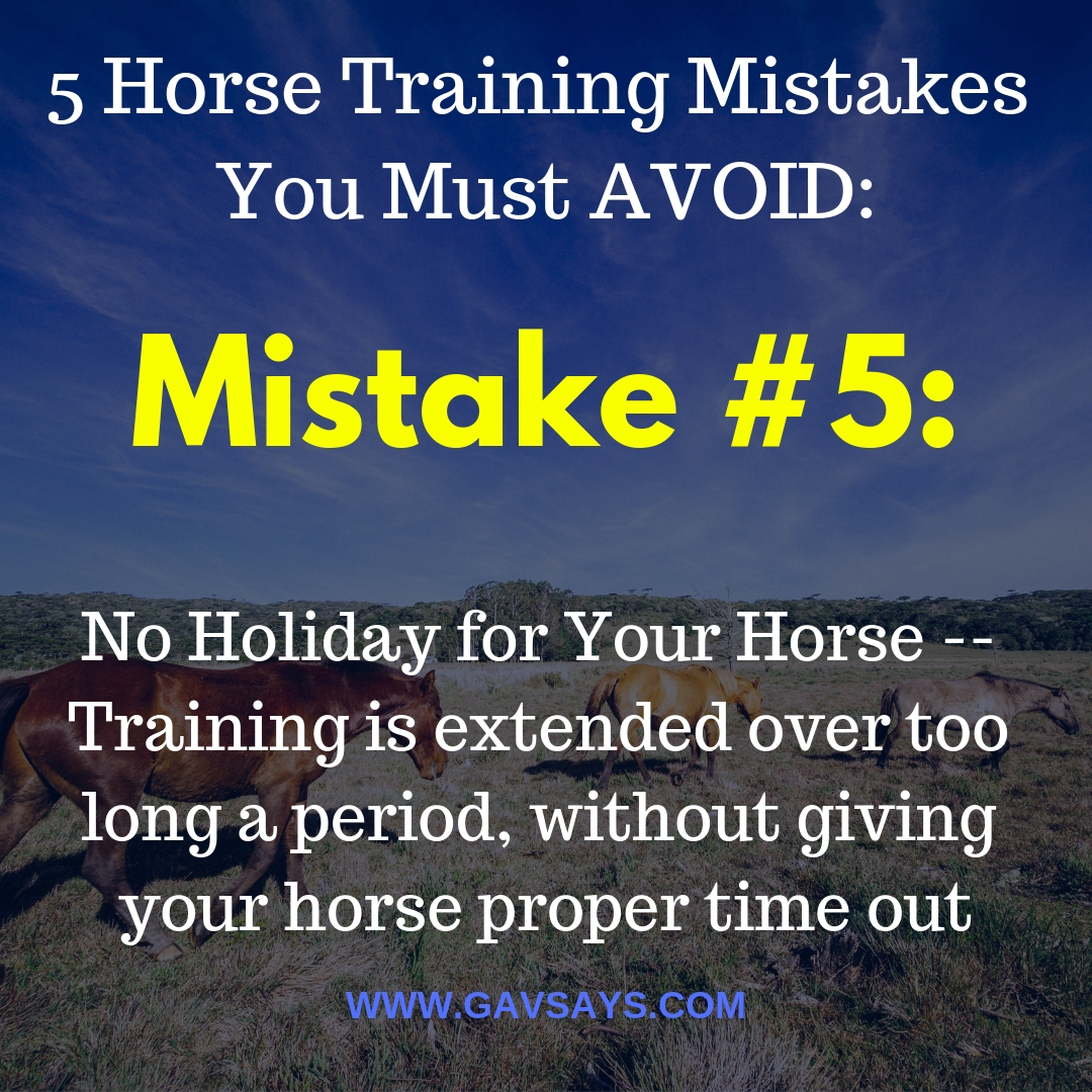 5 Horse Training Mistakes You're Making & Need to Avoid: Mistake #5