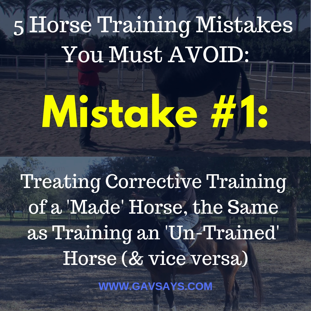 5 Horse Training Mistakes You're Making & Need to Avoid: Mistake #1