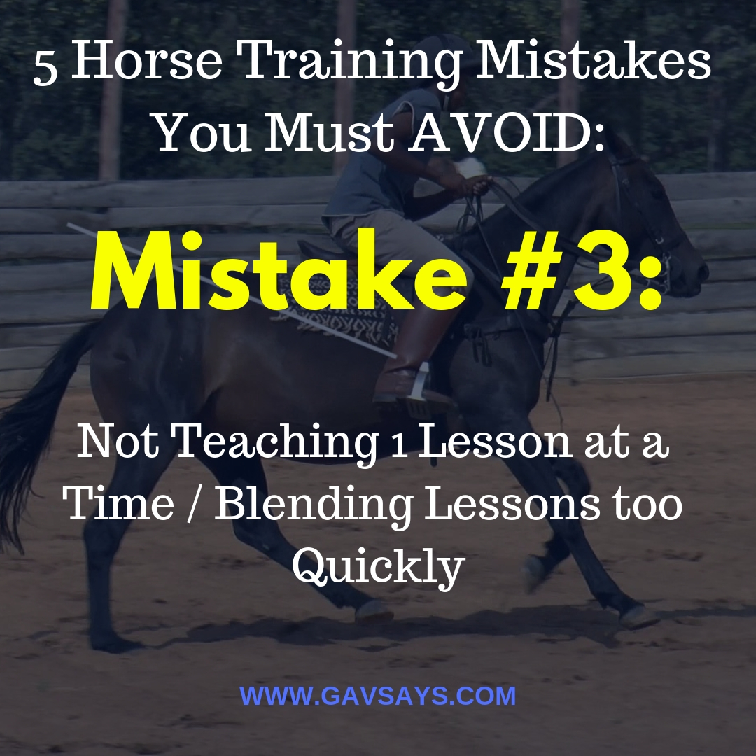 5 Horse Training Mistakes You're Making & Need to Avoid: Mistake #3