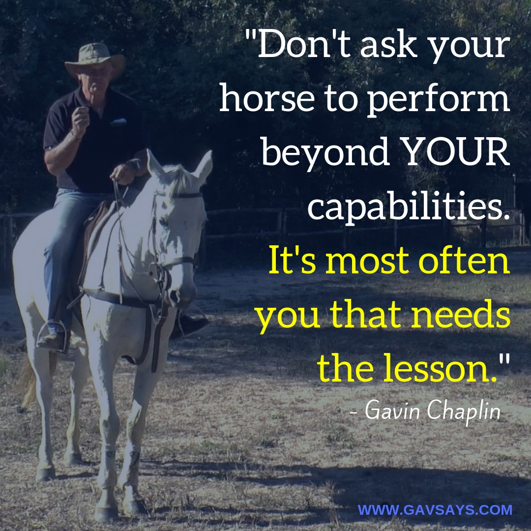 5 Horse Training Mistakes You're Making & Need to Avoid: The MOST IMPORTANT Mistake to Not Make