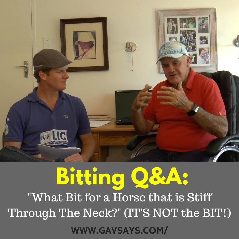 Bitting Q&A: What Bit for a Horse That is Stiff Through the Neck?