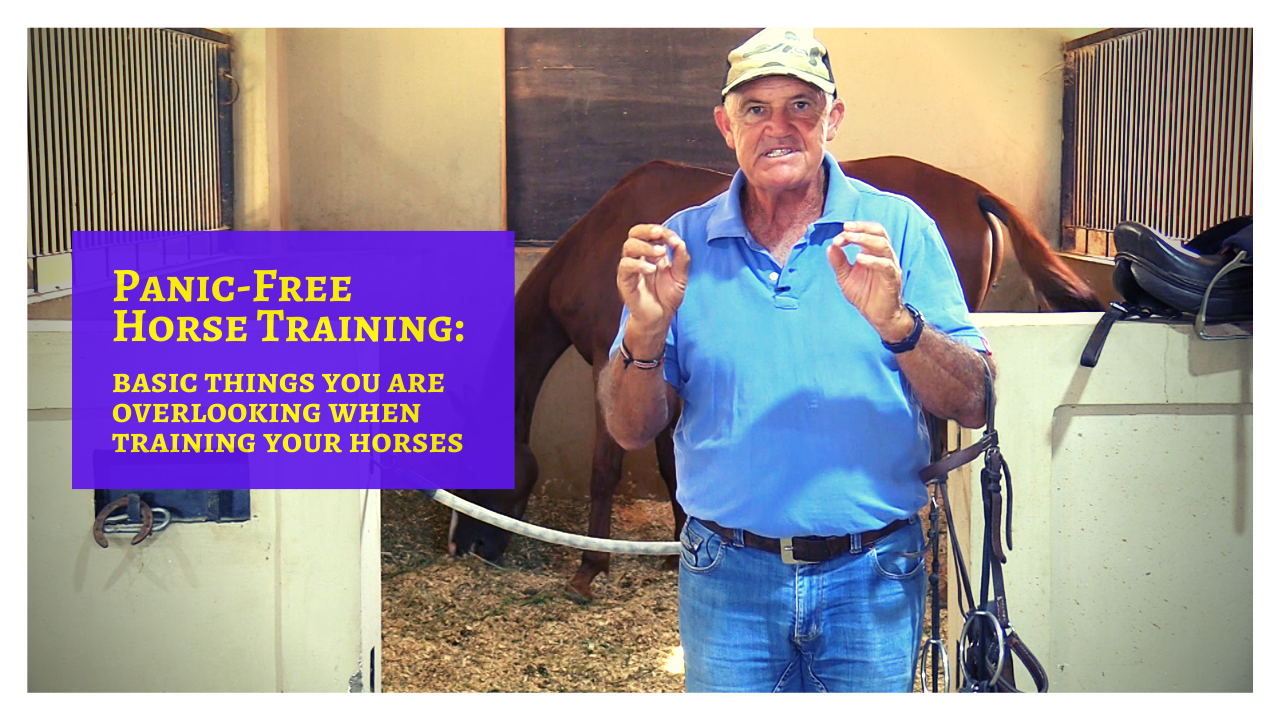 Panic-Free Horse Training