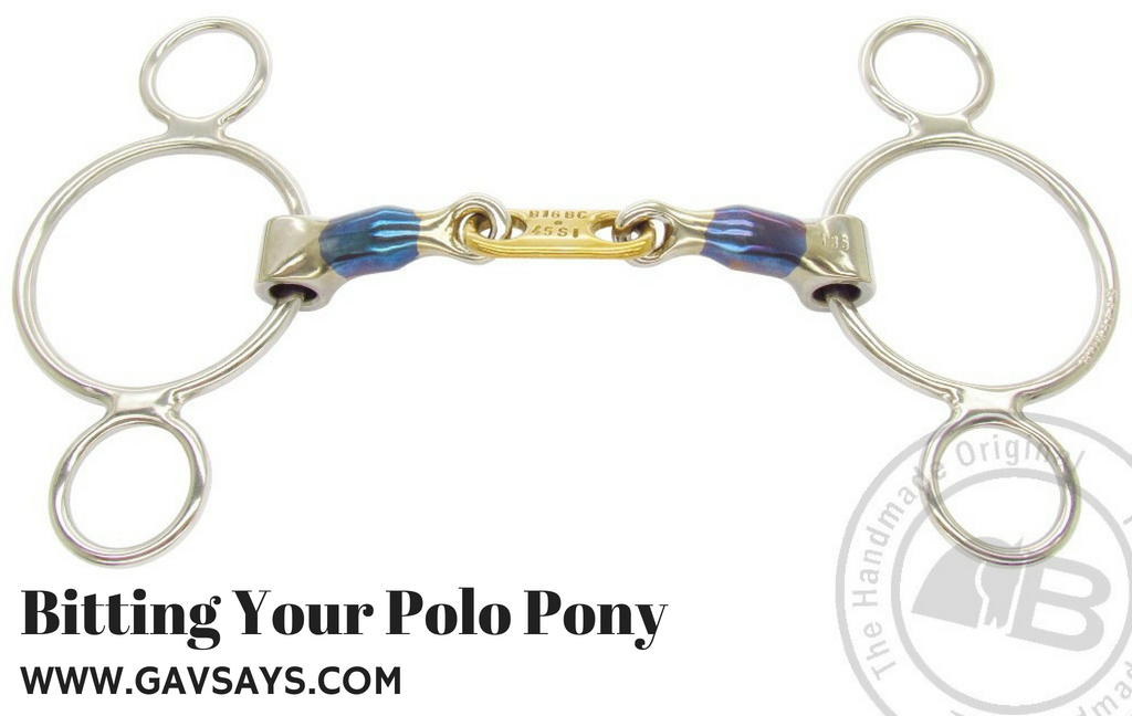 Bitting Your Polo Pony: The Control Plate Gag and it's effects...
