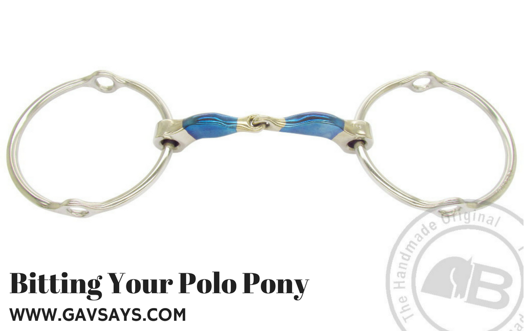 Bitting Your Polo Pony: The Single Break Rope Gag and it's effects...