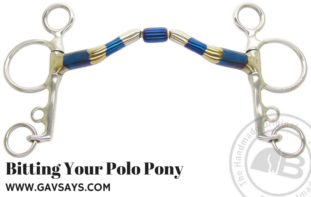 Bitting Your Polo Pony: The Pelham, it's effects and when to use it...