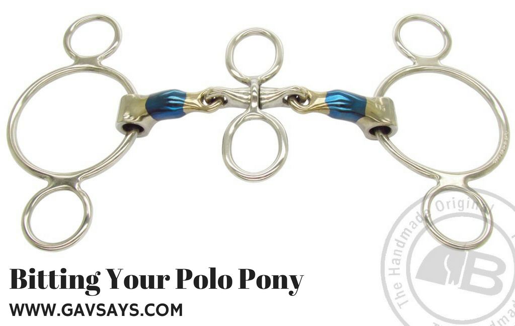 Bitting Your Polo Pony: The Spinner and it's effects...
