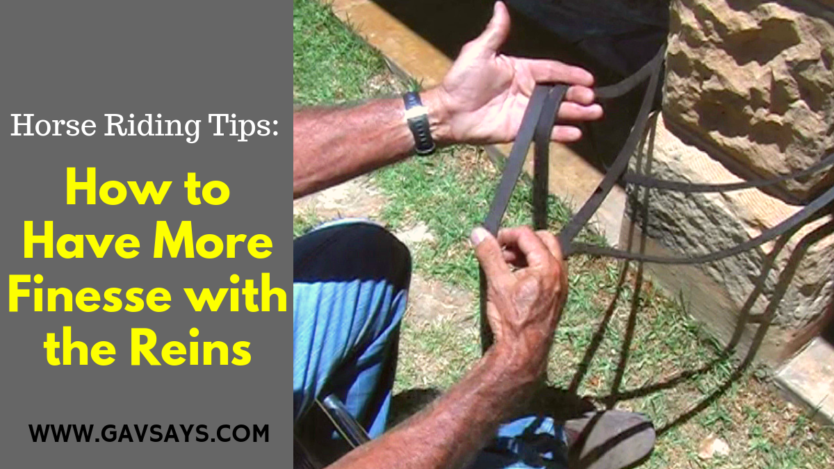 Horse Riding Tips: How to have More Finesse with the Reins...
