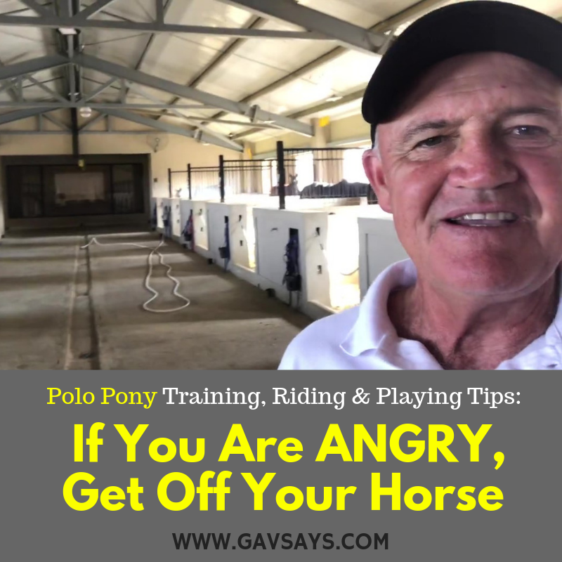If You are ANGRY, Get Off Your Horse | Polo Pony Training