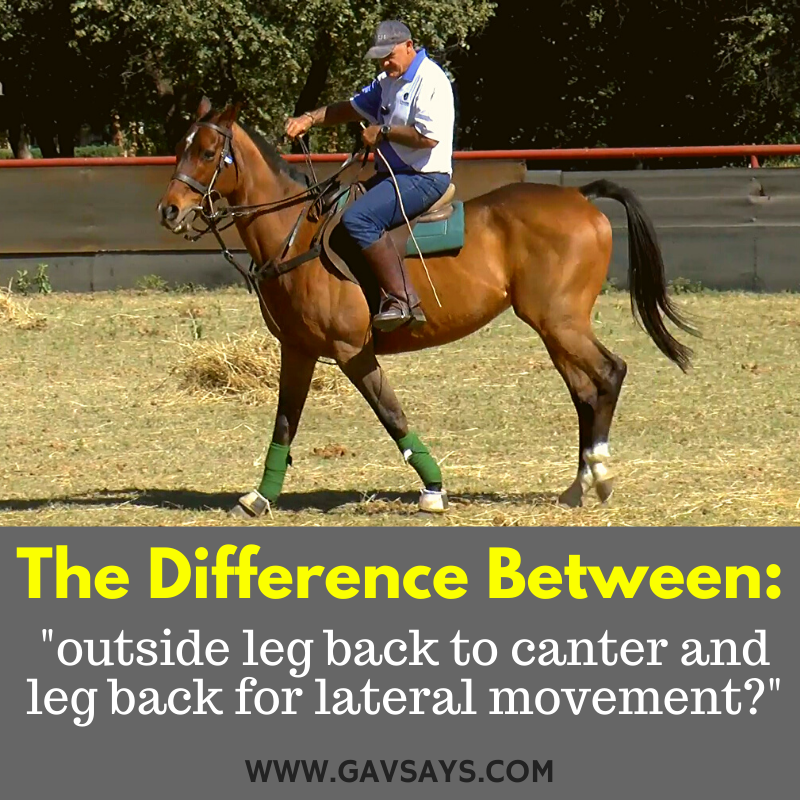 Leg Yielding: Using Legs And Hands Together