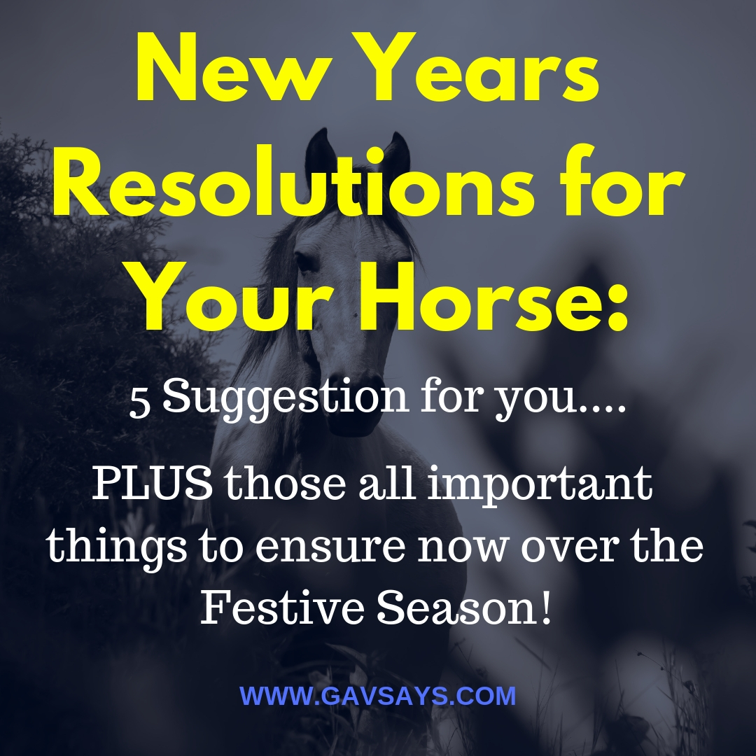 New Years Resolutions for Your Horse: 5 Brilliant Suggestions