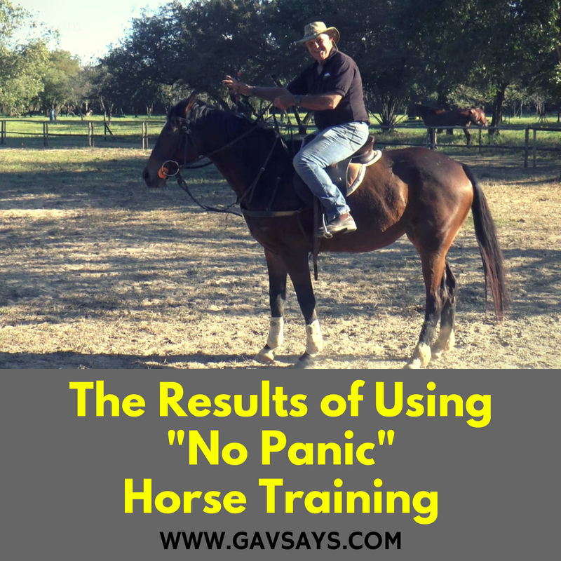 The Results of Using No Panic Horse Training...