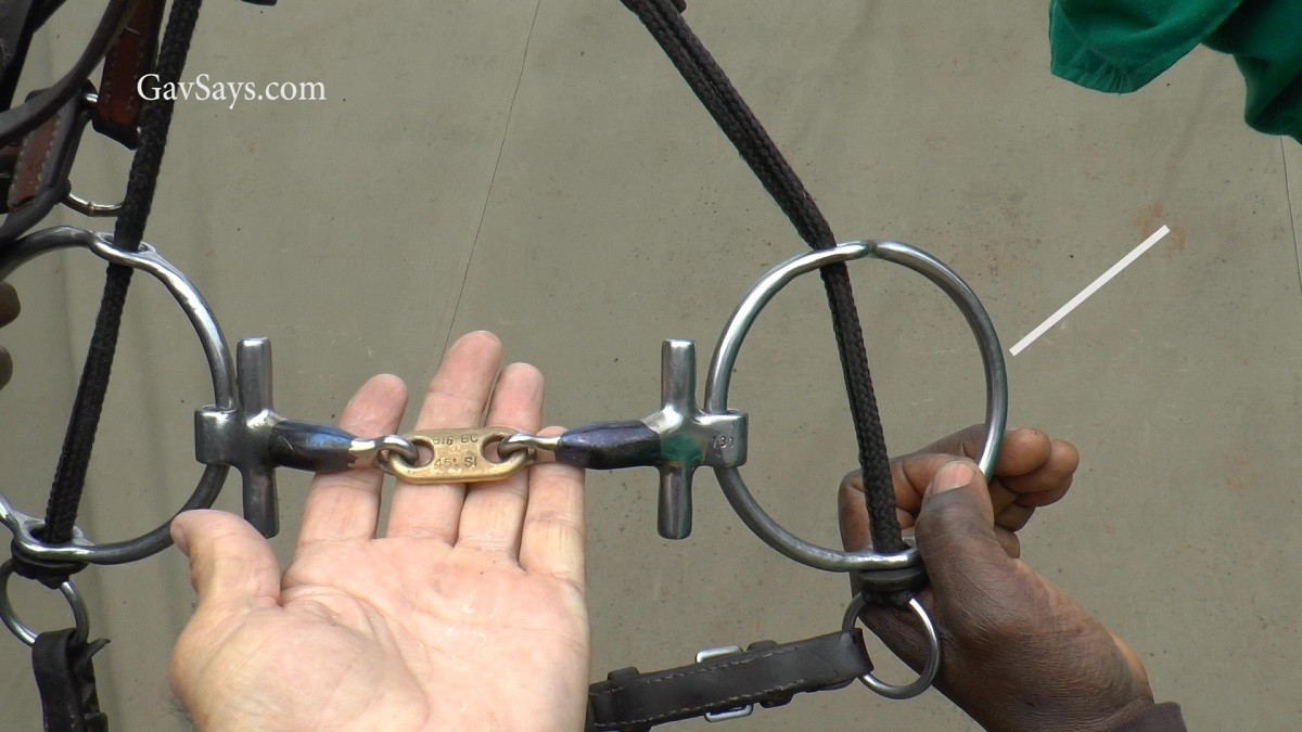 Polo Bits - Changing the setting from a Gag to a Snaffle...