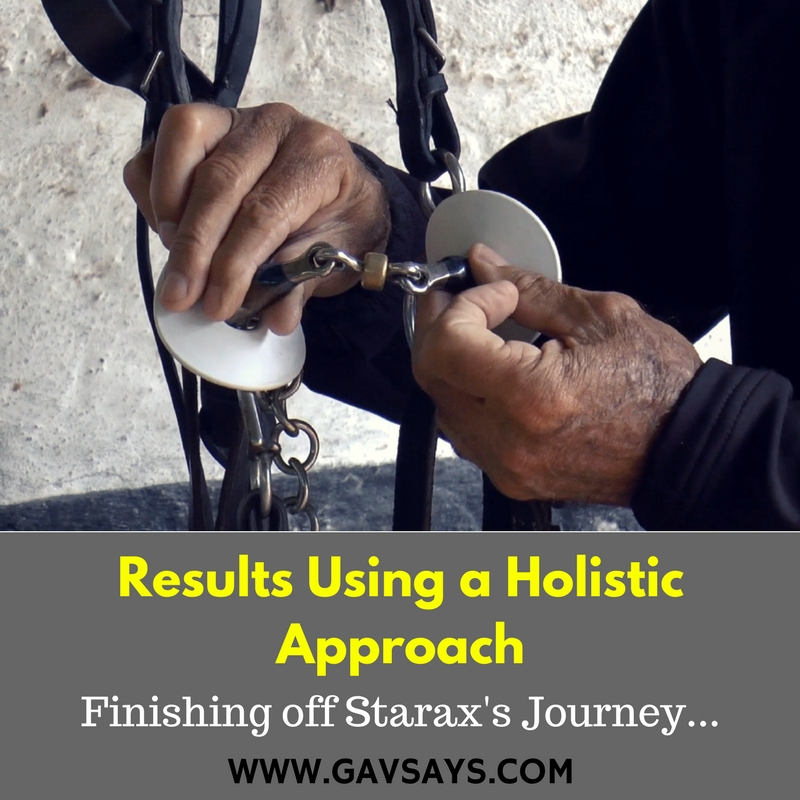 Results using the Holistic Approach to Horse Training - Finishing Starax's Journey