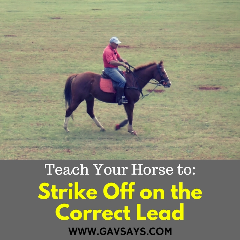 Learn how to teach your horse to Strike off on the Correct Lead.