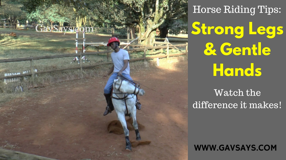 Here's the difference that strong legs and gentle hands makes when riding a horse.