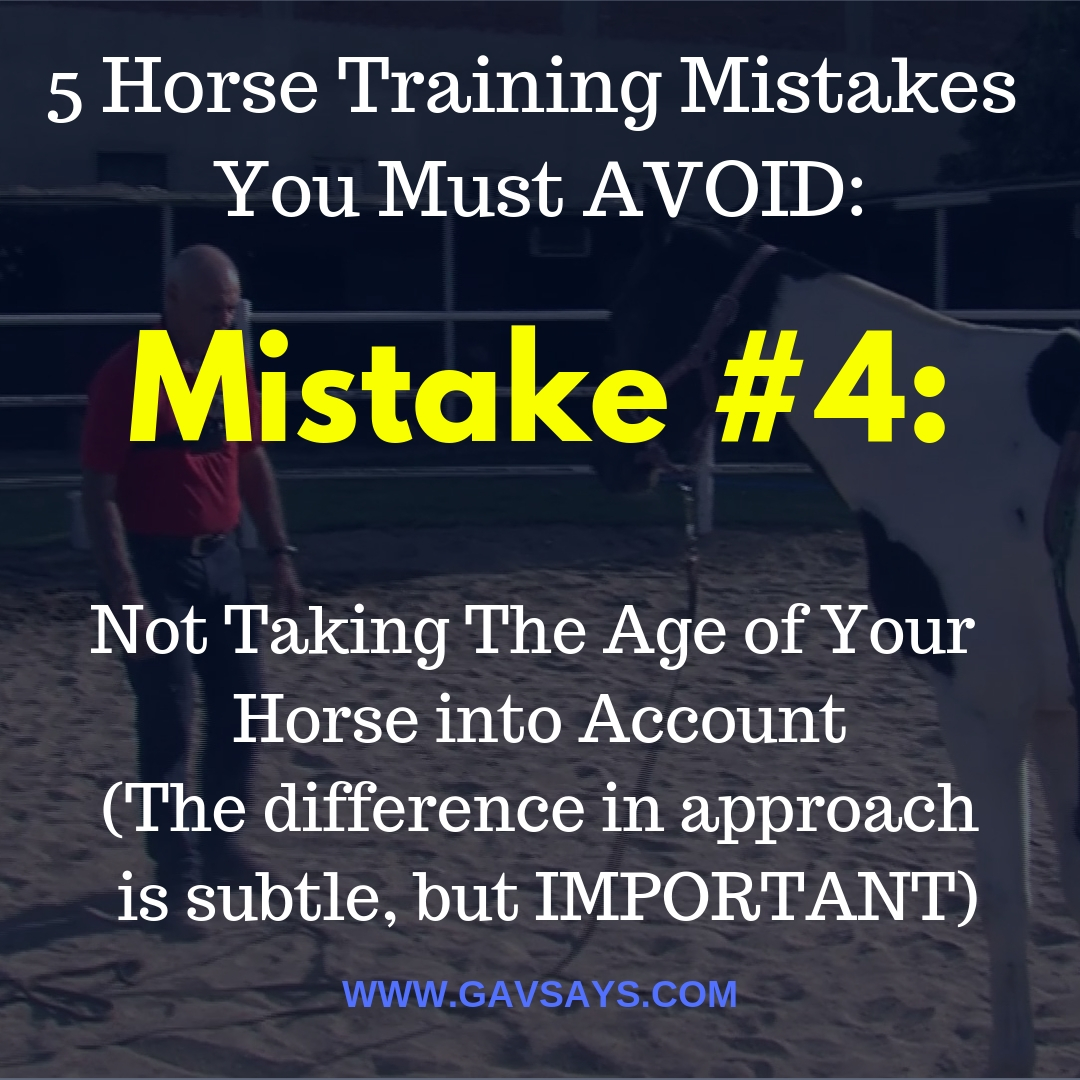 5 Horse Training Mistakes You're Making & Need to Avoid: Mistake #4