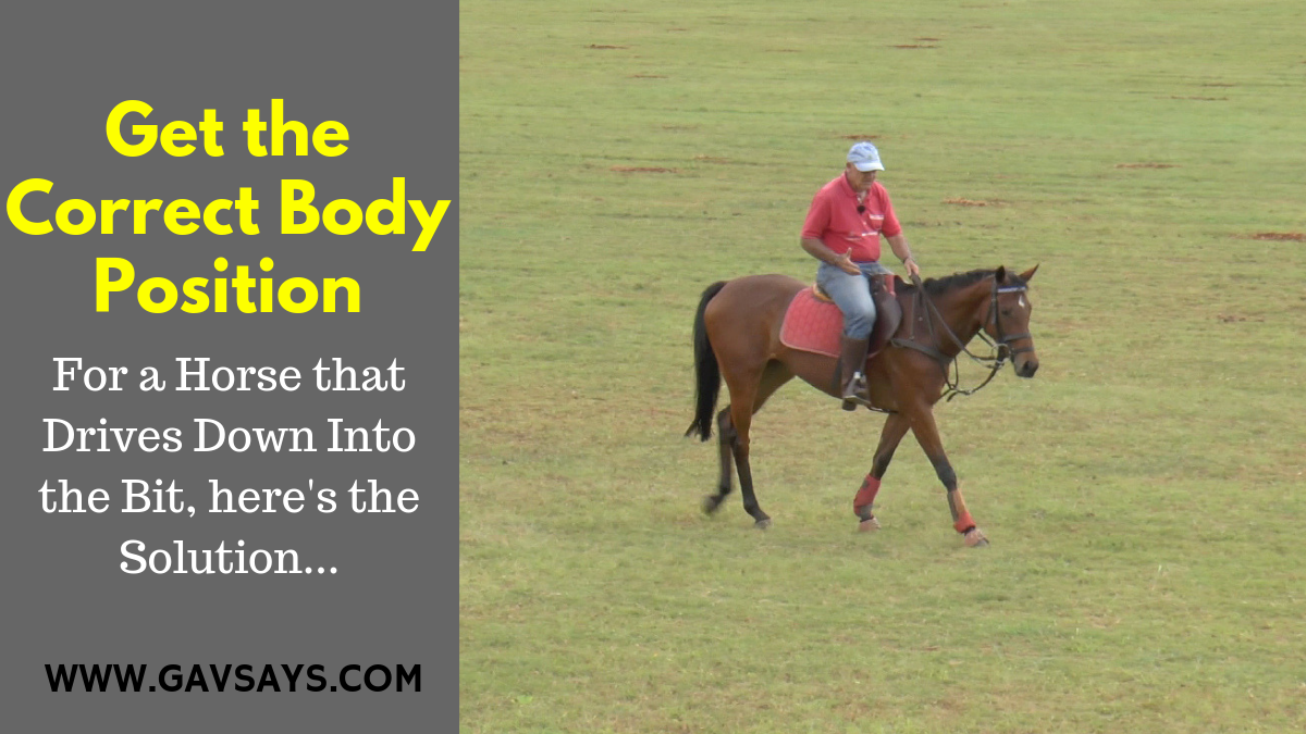 You must always be aware of what work your horse needs. For Promise, a horse that dove into the bit, it was to get the correct body position...