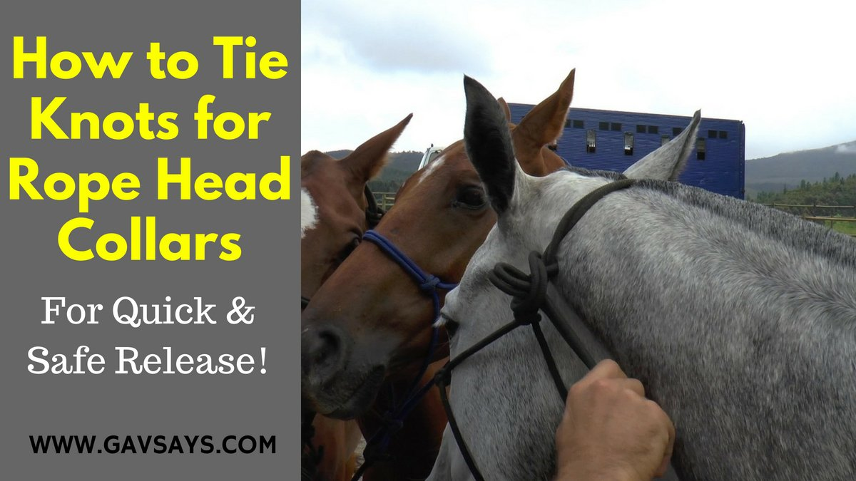 How to Tie Knots for Rope Head Collars - For Safe Release